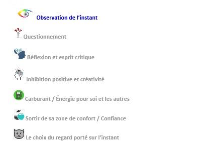 Observation instant
